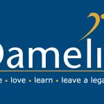 damelin applications