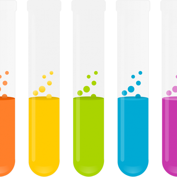 Physical Sciences Grade 12: Chemistry Mind the Gap Study Guide Download